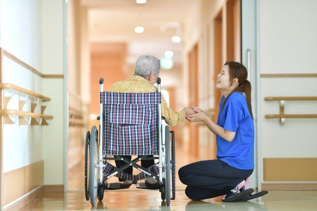 介護 資格 介護福祉士実務者研修の画像